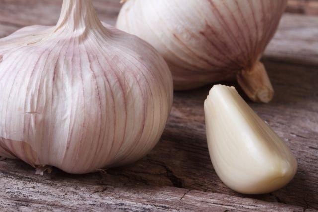 6 benefícios do alho para a saúde (e como usar) - Tua Saúde