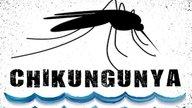Como identificar e Tratar a Chikungunya