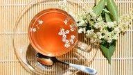4 Amazing natural flu remedies