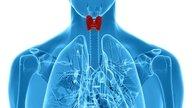 8 problemas comunes en la tiroides y cómo identificarlos