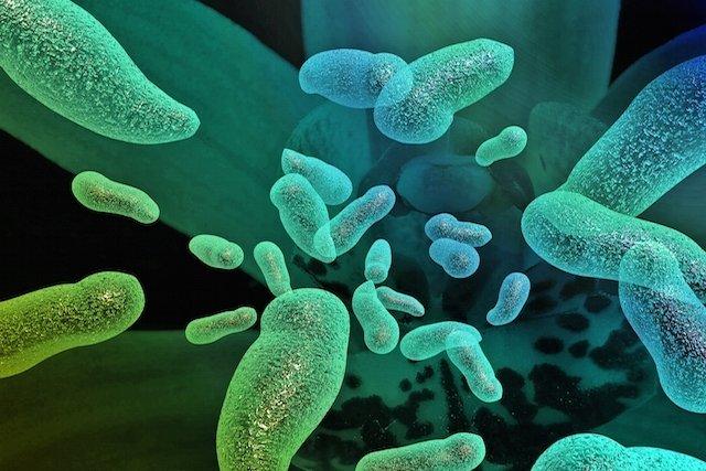 Como identificar e tratar a Poliomielite