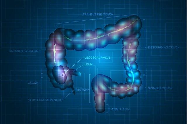 Sintomas e Tratamento para Câncer no Ânus e Reto