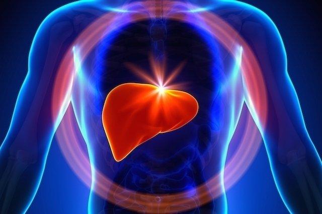 Tipos de hepatite