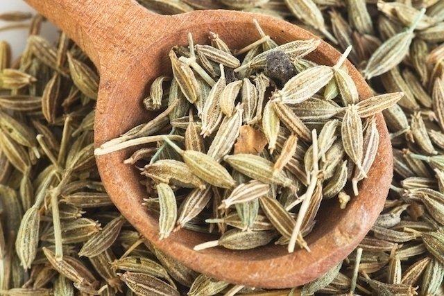 Erva-doce: para que serve e como preparar o chá - Tua Saúde