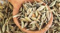 Para que serve a erva-doce e como preparar o chá
