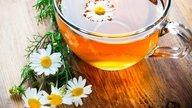 5 tés para dormir mejor y combatir el insomnio
