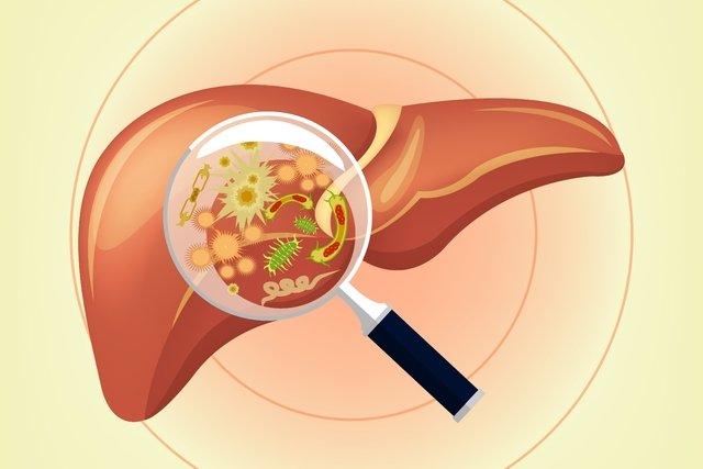 O que é Hepatite Aguda e quando pode ser grave