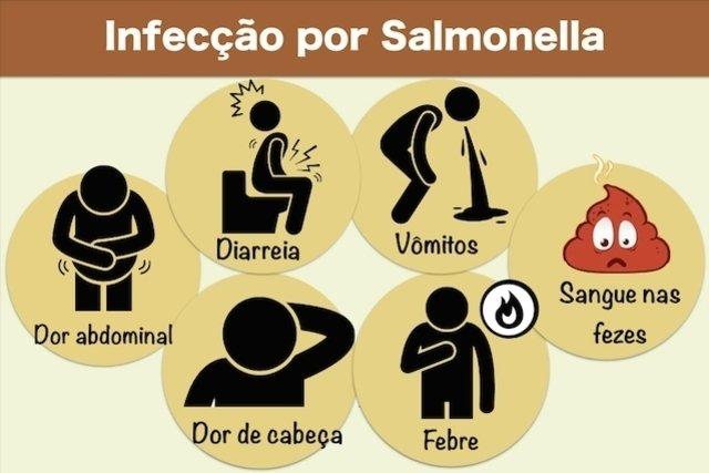 Sintomas da Salmonelose e Tratamento