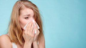 5 remédios para rinite alérgica