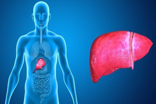 Remédios para problemas no fígado