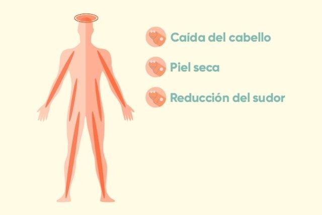 7 Señales que pueden indicar problemas en la Tiroides