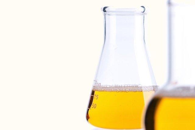 Urina de 24 horas: para que serve, como fazer e resultados
