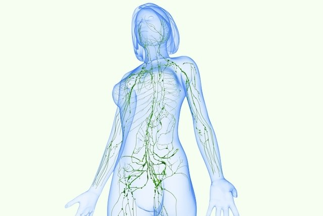 O que podem ser gânglios linfáticos inchados
