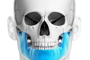 Articulações da mandíbula