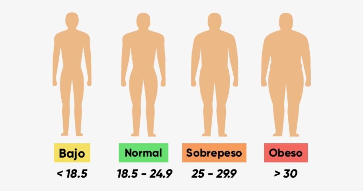 como saber mi indice de masa muscular