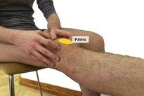 2. Apalpar o osso do joelho