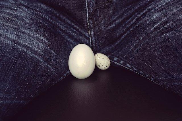 Inchadas testículos dos torcidas perto veias