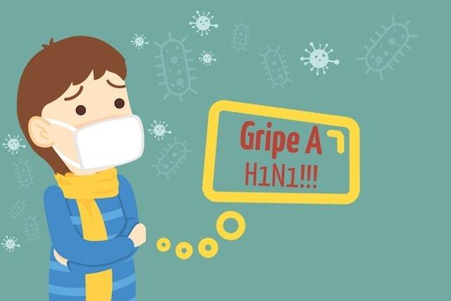Resultado de imagem para imagem da gripe hni