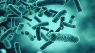 Mycoplasma genitalium- Qué es, síntomas y tratamiento