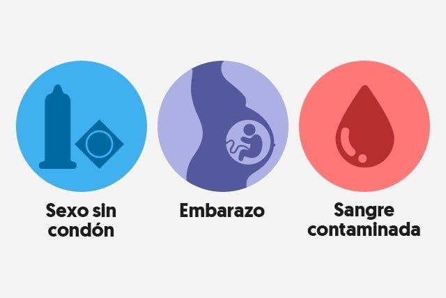 Frases De Prevencion De La Sifilis: Transmisión Y Prevención De La Sífilis