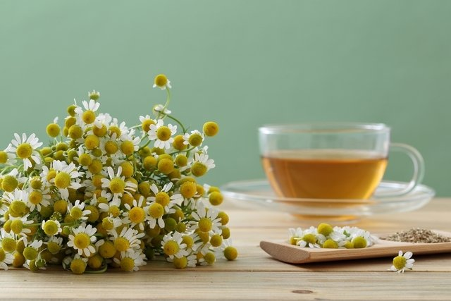 9 benefícios do chá de camomila para a saúde