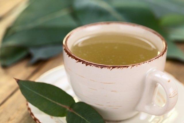 3 Recetas de Té de Guaco para aliviar la tos