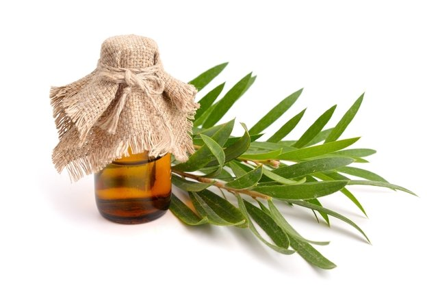 6 Remedios caseros para forúnculo