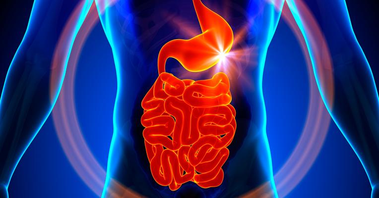 sintomas-do-cancer-de-intestino
