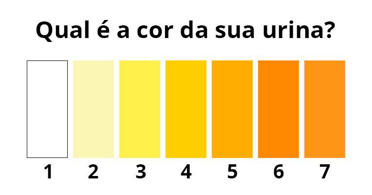O que significa Urina Escura, Verde, Esbranquiçada, Marrom ou Laranja - Tua  Saúde 58e792e4bf