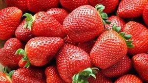 Dieta para anemia imagem de destaque