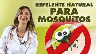 Repelente para Zika - como acabar com Aedes aegypti comendo melhor | #Zika