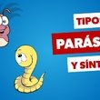 Síntomas de parásitos intestinales