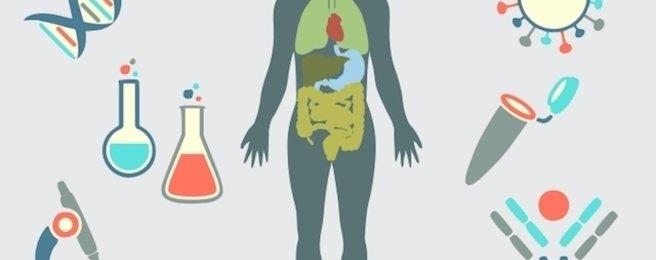 O que é Imunoterapia, e como pode curar o Câncer